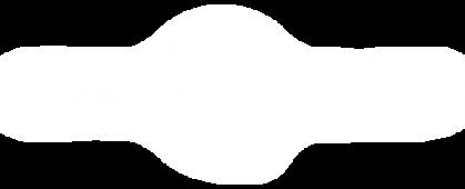 logo-drivequant-blanc